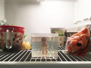 Baby growing in the fridge